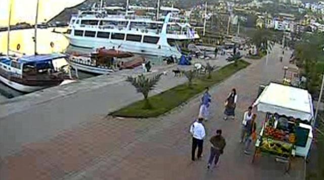 Онлайн камеры турции в реальном времени